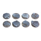 Shaleground - 25mm Flat Round Bases (8)